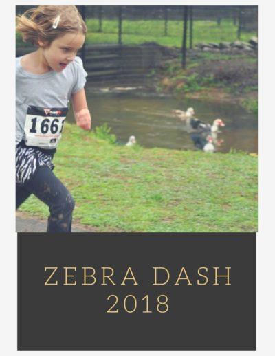zebra dash