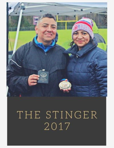 the stinger2017 (1)